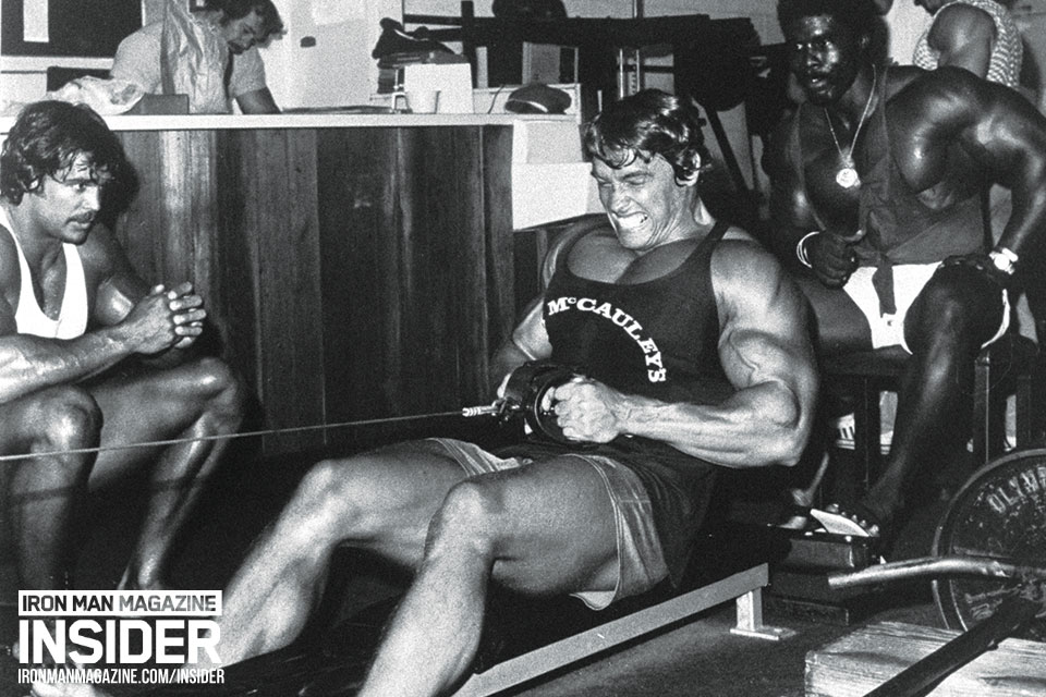 Arnold Back Workout Row